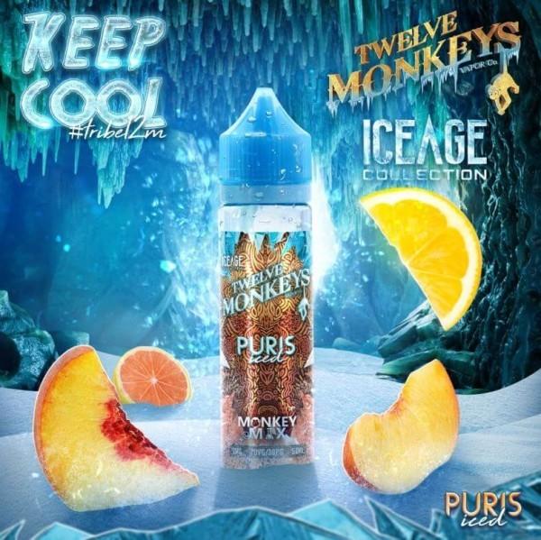 Twelve Monkeys - Ice Age - Puris Iced 50ml (DIY Flavour-Konzentrat)
