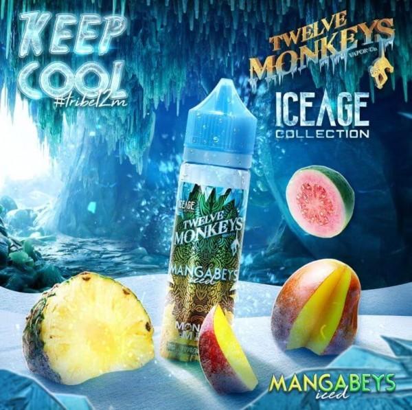 Twelve Monkeys - Ice Age - Mangabeys Iced 50ml (DIY Flavour-Konzentrat)