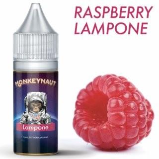 Monkeynaut - Lampone / Himbeere 10ml Aroma